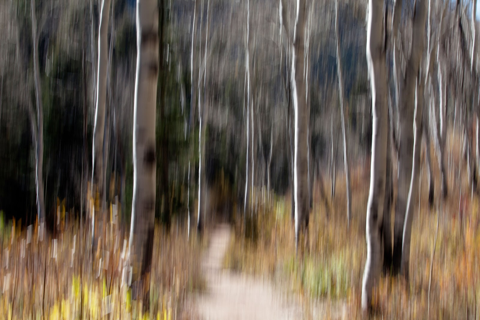 Abstract Photography: ShutterbugMama: Abstract Landscape Photography