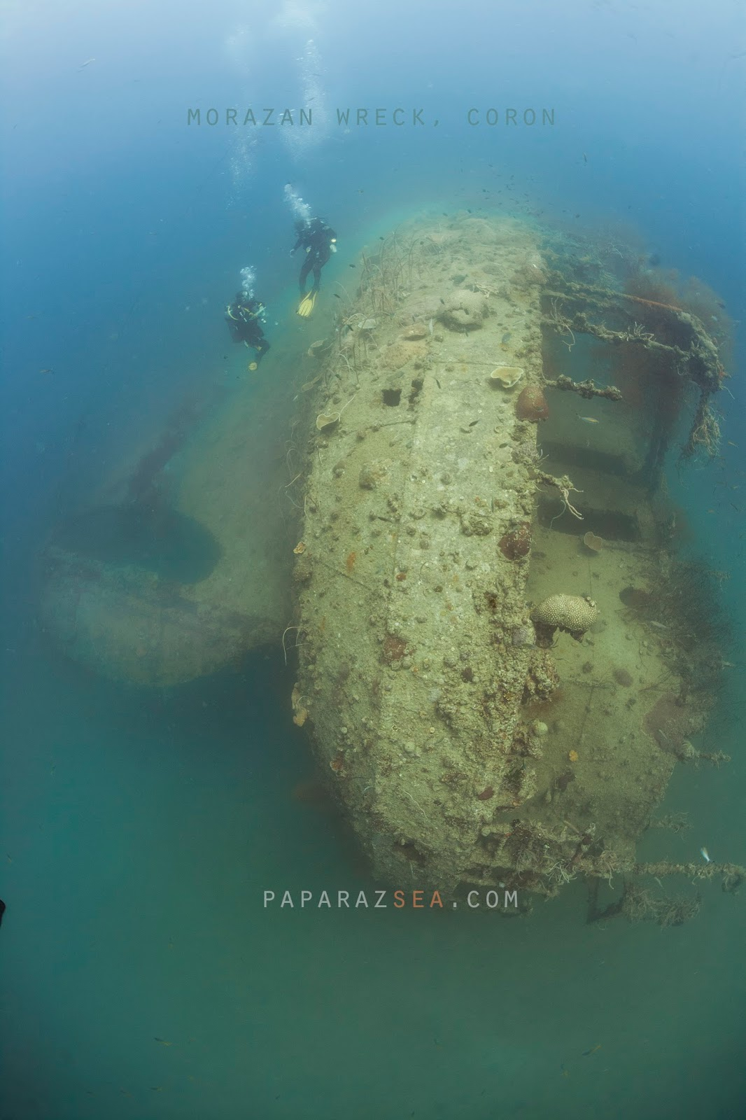 Guide To Coron Wreck Diving And Photography Paparazsea