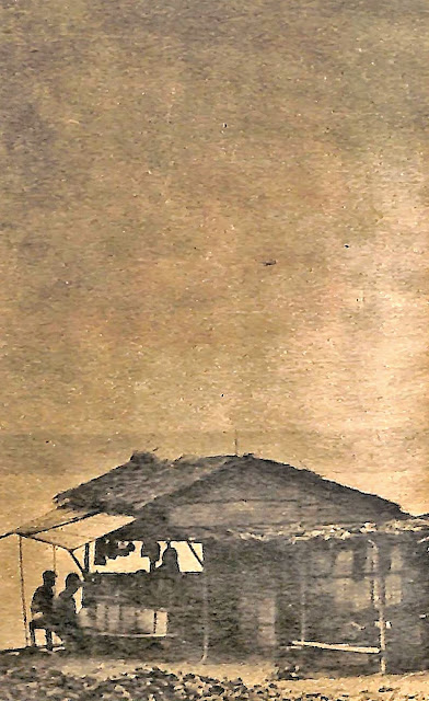 """Caption in The Chronicle Magazine:  """"TALISAY: Houses are usually located at the center of a plantation, near the shoreline, and wherever there is fresh water."""