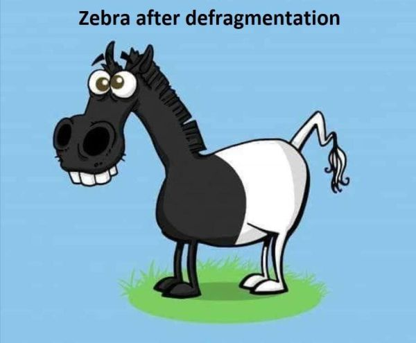 Zebra after defragmentation