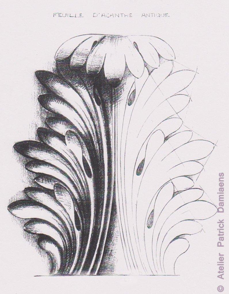 Ornamental Woodcarver Patrick Damiaens The Acanthus Leaf