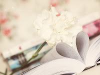 Top 5 libros para este 14 de febrero