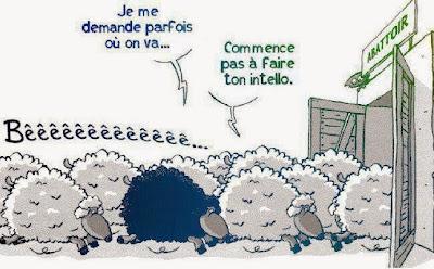 http://3.bp.blogspot.com/-wcweY8KxMz8/VPSIcIK1ppI/AAAAAAAAJ0g/uWs7ZhBVJ80/s1600/mouton-noir-intello-abattoir.jpg