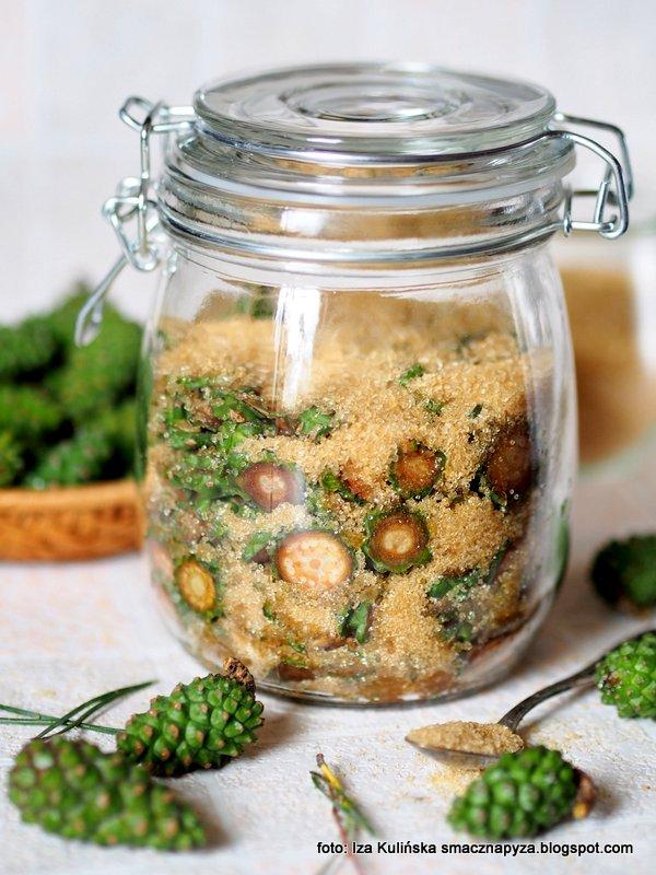 Syrop z zielonych szyszek sosnowych