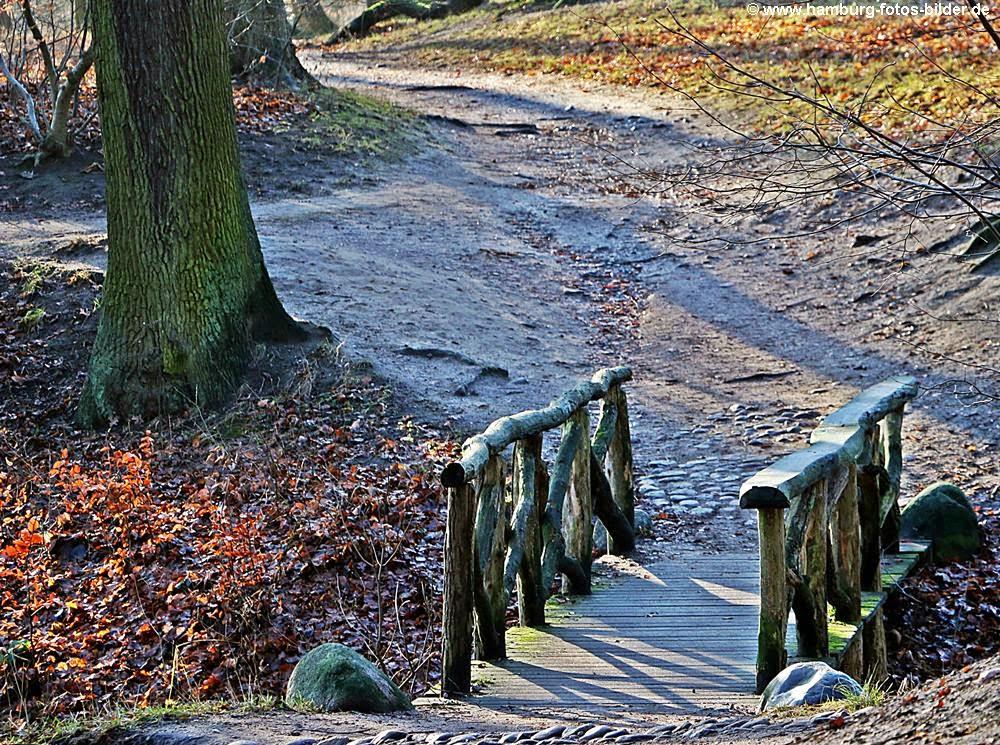 Wanderweg mit Brücke im Jenischpark