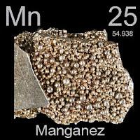 Manganez (Mangan) elementi üzerinde manganezin simgesi, atom numarası ve atom ağırlığı.