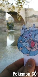 Pokémon CÓ.
