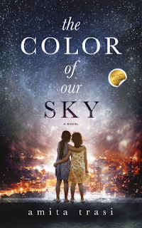 The Color of Our Sky book cover