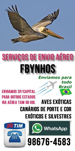 Fbynhos - Serviço de envio Aéreo
