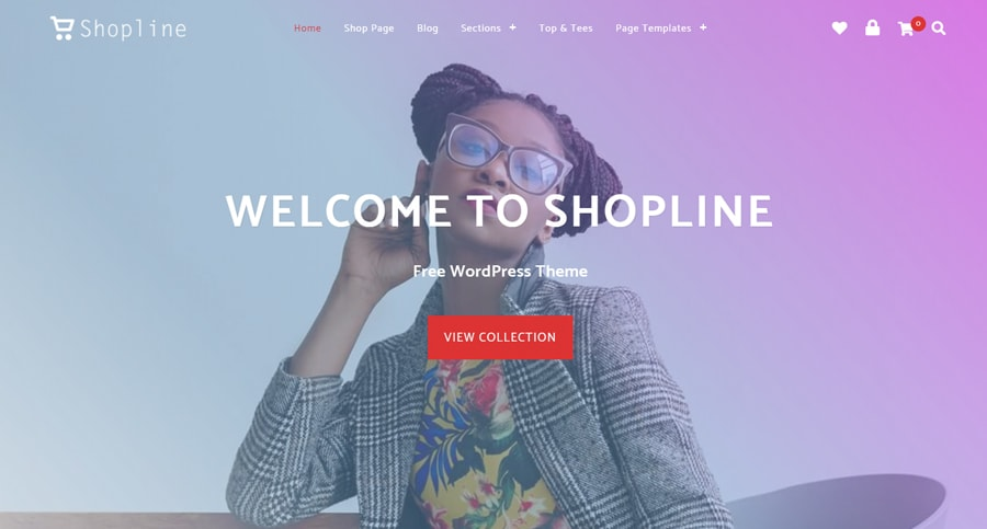 20+ Daftar Koleksi Template Online Shop Wordpress Gratis