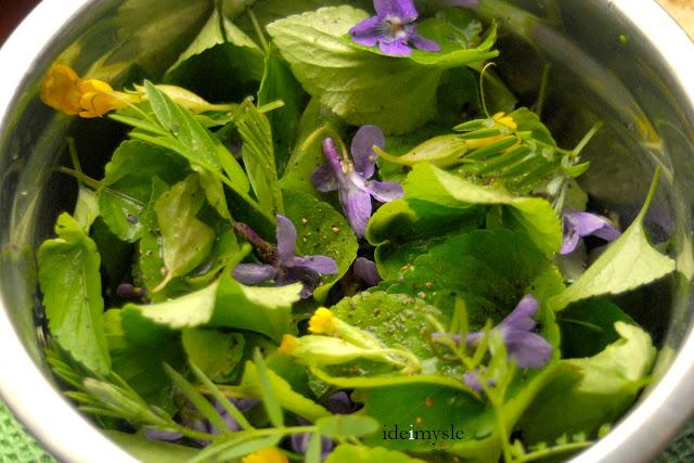 sałatka z kwiatami, wyka przepis, jadalne kwiaty, jadalne rośliny ogrodowe, dzikie rośliny jadalne, wiosenna sałatka, pędy wyki, vicia cracca, vicia recipe