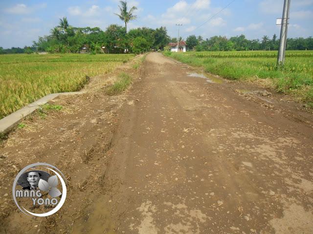 Inilah hasilnya .... Jalan sepanjang 500 Meter ditimbun tanah ... Hahaha... Subang... Oh, Subang... Bupatinya malah pesantren dulu