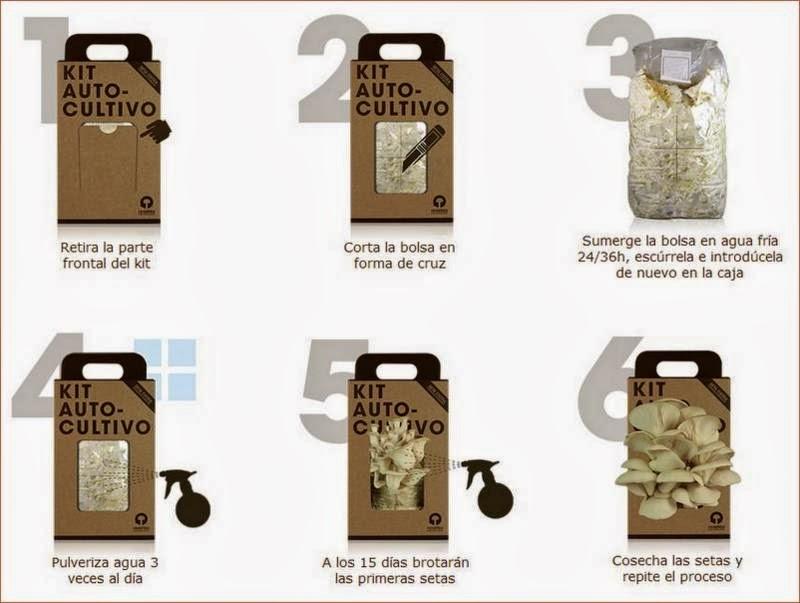 Instrucciones del kit de cultivo de Resetea