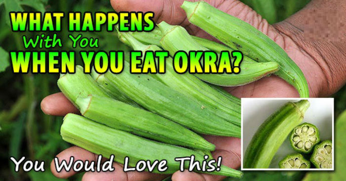 Image result for After Eating Okra, This is What Happens with Your Body – GTM