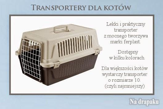 Transporter dla kota – jaki wybrać?