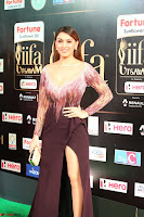 Hansika Motwani in Glittering Deep Neck Transparent Leg Split Purple Gown at IIFA Utsavam Awards 43.JPG