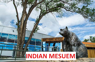 Top 10 Mesuem in India