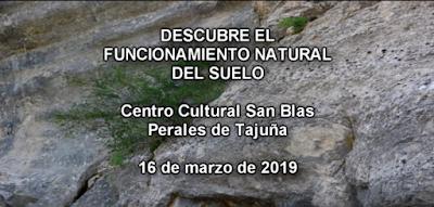 DESCUBRE EL FUNCIONAMIENTO DEL SUELO