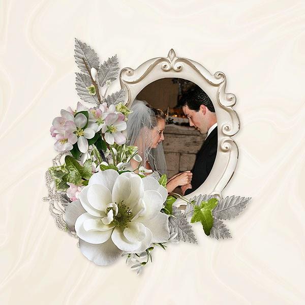 Diseño de Albunes bodas y eventos sociales Chicago