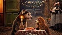Lady and the Tramp 2019 film subtitrat in romana