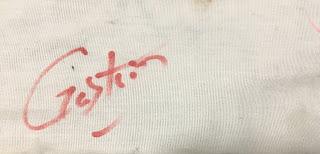 Gaston Autograph Disney Parks