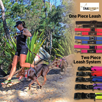 TailRunner-handsfree-leash-system-for-one-or-multiple-dogs-in-four-colours