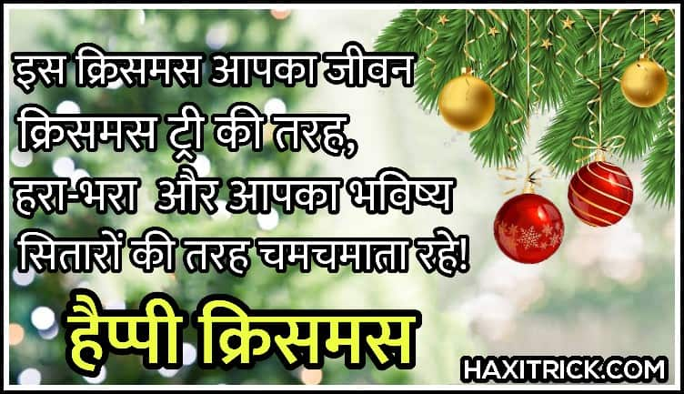 Happy Christmas Hindi Shayari Pictures for status
