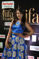 Madhu Shalini Looks Super Cute Slim trim Blue Choli Ghagra IIFA Utsavam Awards 046.JPG