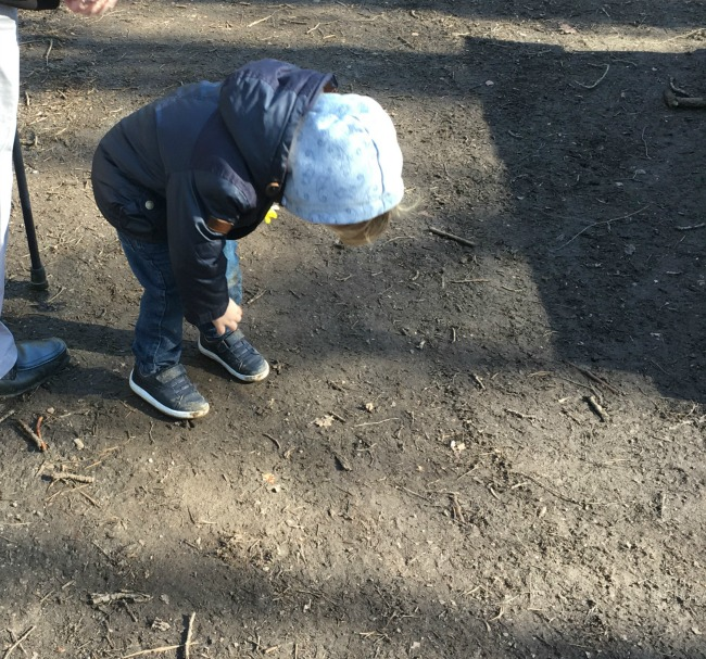 Our-Weekly-Journal-20-March-toddler-looking-at-a-bug