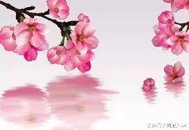 原創 961【春思】/散文詩 - 沧海一粟 - 滄海一粟—滄海中的一粒穀子