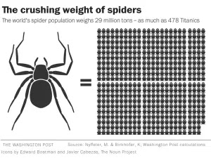 The crushing weight of spiders