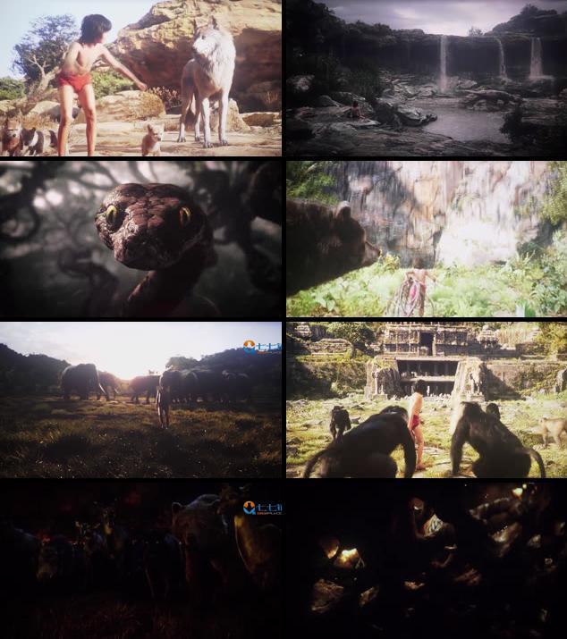 The Jungle Book 2016 Dual Audio Hindi 720p HDTS