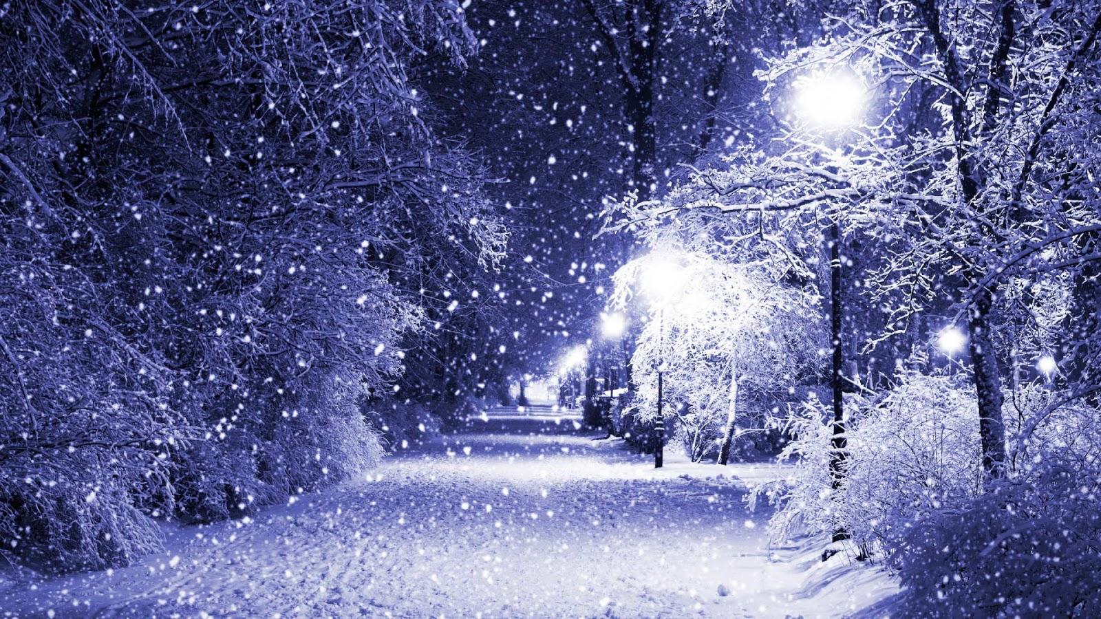 Falling Snow Wallpaper Animated Iphone ⇜Зимние леса Winter Forest⇜ Красивые картинки обои и