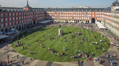 Foto del día: Pradera de césped natural en la Plaza Mayor de Madrid