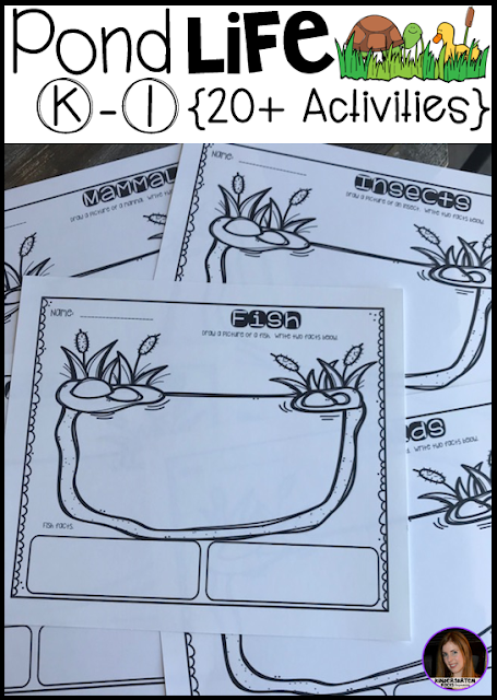 Are you looking for fun pond activities for your kindergarten through first grade learners?  Our Pond Life unit is full of hands on activities, real-life photos, craftivities and lots of opportunities to use new vocabulary.