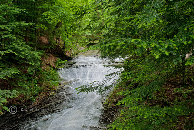 best hikes cleveland ohio
