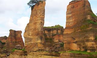 Gray Canyon Kudus
