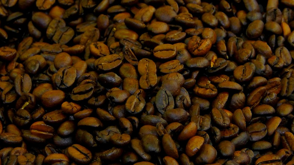 Green coffee demi moore