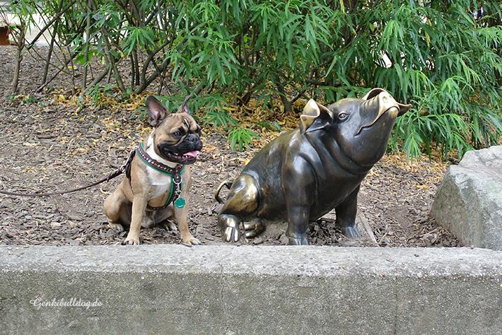 Mit Hund im Zoo Heidelberg