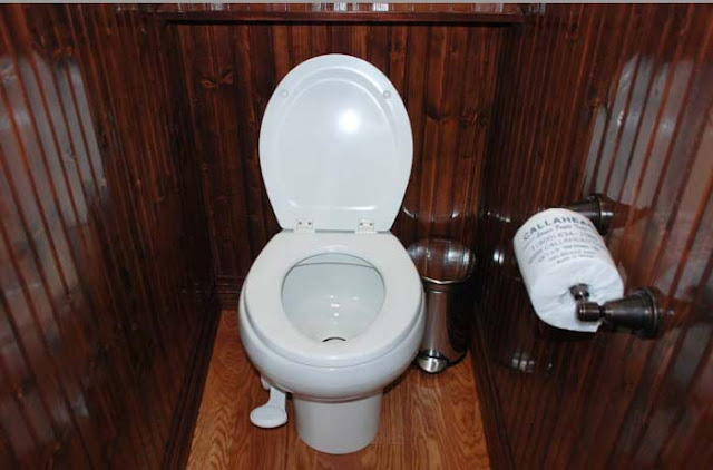 Private Bathroom with Pedal Flush Porcelain Toilet