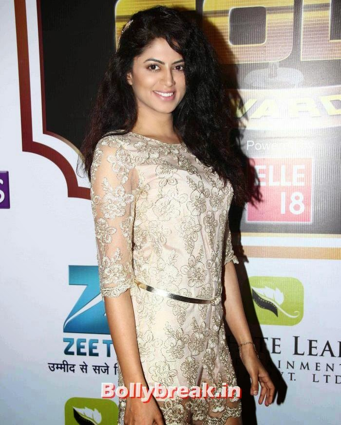 Kavita Kaushik, Popular Tv Actresses on The Red Carpet of 7th Boroplus Gold Awards