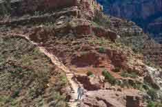 atau Ngarai Besar yaitu sebuah keajaiban alam di dunia yang bertengger di tepi tebing te 7 FAKTA MENAKJUBKAN DARI GRAND CANYON