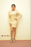 Actress Pooja Roshan Stills in Golden Short Dress at Box Movie Audio Launch  0123.JPG