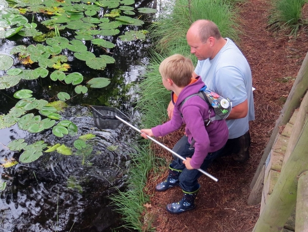 Pond Dipping with Devon Wildlife Trust - Photo copyright Rog Hamling (All rights reserved)