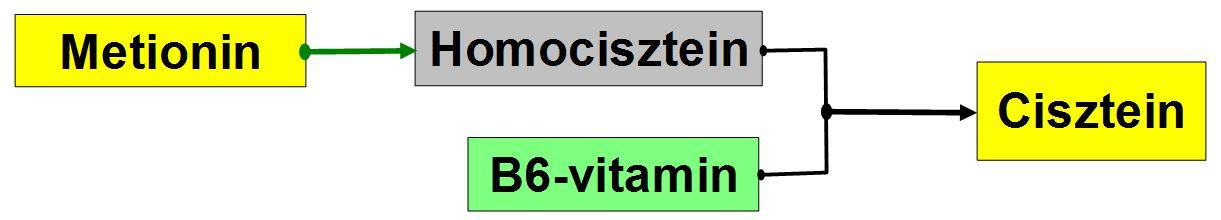 A 23andme óriási súlycsökkentő vizsgálatot indít)
