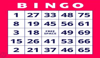 Bingo game, হাউজি খেলা, জুয়া খেলা