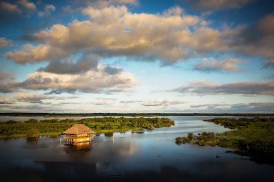 Iquitos y alrededores, selva peruana, como ir a la selva Peru. selva Loreto