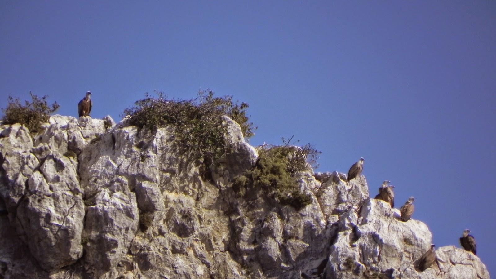 Alquezar, Sierra de Guara, Huesca, Aragón