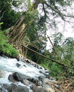 Wisata Akar Seribu Gondang Mojokerto