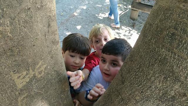 A empatia é a escolha que me guia. Piquenique no parque com amigos.